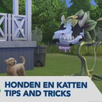 Tips & tricks sims 4